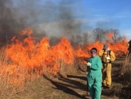Prescribed burn fall 2017 (Photo: A.Dusick)
